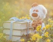 Collectible mohair teddy bear Rufi Christmas gift