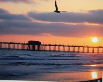 8 x 10 matted photograph, sunset Huntington Beach, California
