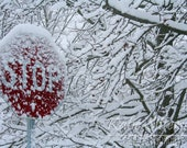 Winter Snow Photo, Stop Sign Photo, Snow Storm Landscape Photo 8x10 Photo, Framed Photography Option