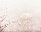 White Horse Snow Storm -Winter Wonderland Pastels -8x8 Fine Art Photo Print