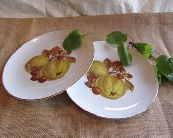 Lovely Hand Painted German. Bavarian Fruit Plate, Winterling
