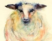Sheep, Animal art, Original watercolor