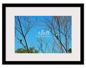 Lovebirds Photo / 12x18 / Free Shipping
