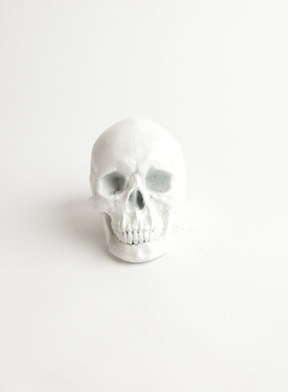 RESERVED for Casey - The Wiloughby - White Faux Human Head - Resin Skeleton - Sugar Skull Like
