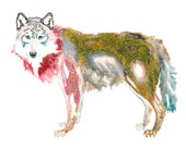 LARGE PRINT of wolf painting - wolf art - in red / yellow goldenrod / sienna brown / scarlet / grey / prussian blue