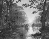 FOREST Solitude Pond Marshes - Antique Print Vintage