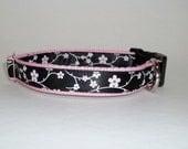 "Asian Cherry Blossom Dog Collar Black on Pink Flowers Adjustable 3/4"" W Medium"