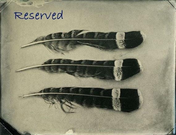 Reserved for Vintage4700