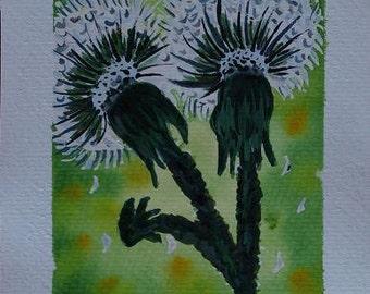 Original Irish Watercolour Painting by Artist CORINA HOGAN - Dandelions