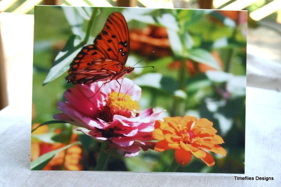 Colorful Butterfly Notecards with Envelopes