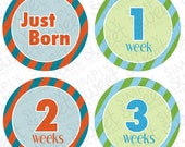 Monthly Baby Onesie DIY Printable Stickers (pdf FILE ONLY) - Boy - Stripes