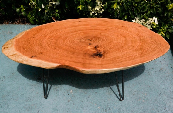 Live Edge Rustic Butternut Oval Slab Coffee Table By Owlswhatknots