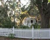 Art Photography Coastal Home near Savannah Georgia. Romantic with draping Spanish moss