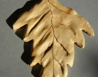 Handcarved Organic  natural Leaf .
