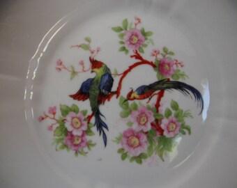 Antique Vintage Pair of German Bird Plates  - lovely