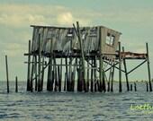 Still Standing Nautical Beach Landscape Cedar Key Florida Fine Art Photography wall decor 11X14
