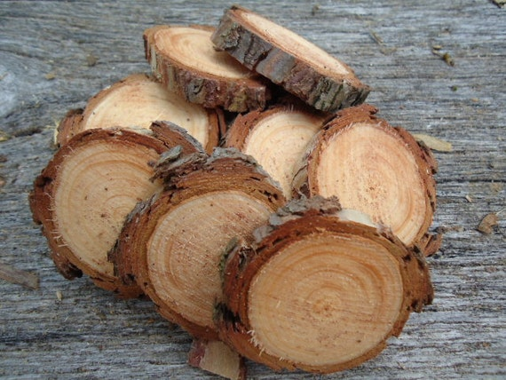 50 Pine wood slices for crafts, candles, decoration, blanks, rustic weddings, blanks, buttons