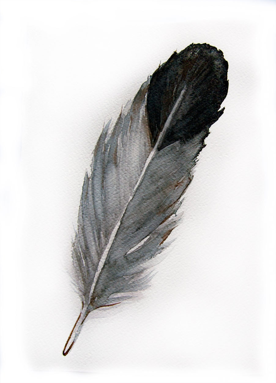 watercolored feather