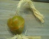 Coconut Tug Treat.