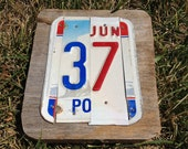 2 Letter Custom License Plate Name Sign - Reclaimed Wood