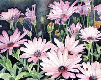 "ACEO Fine Art Print / From a Original Watercolor / Of A Daisy Patch /  Done in Shades of Pink & Greens / Size 2.5""x 3.5"""
