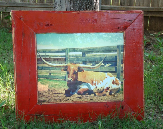 Rustic Home Decor - 11x14 Wood Photo Frame with Lounging Longhorn Photo - Firecracker Red, Black, Western, Handmade