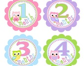Baby Month Milestone Stickers Monthly Newborn Stickers Month by Month Stickers Girl Baby Shower Gift Month Stickers Photo Prop, BMST001