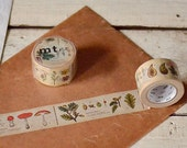 mt ex illustrated guide to flora : Japanese washi masking tape 30mm x 10m - kawaii collage scrapbooking deco