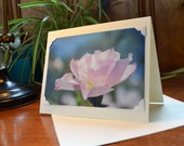 Photo Note Card - Greeting Card Floral Photography - Blank Inside