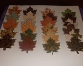 100 Leaf Gift Tags Labels
