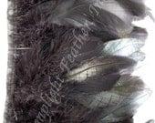 1 YARD, black, rooster coque trim, bias tape, bulk, wholesale, per Yard