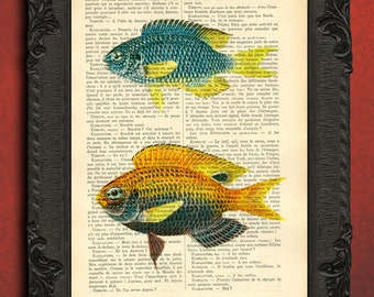 fish art - vintage fish print on book page, orange blue fish wall decor upcycled recycled dictionary page