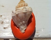 Real Sea Shell on Orange Pin or Brooch