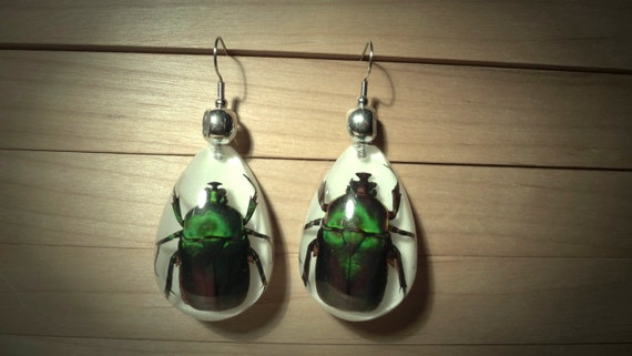 Moonrise Kingdom Custom Suzy Beetle Earrings