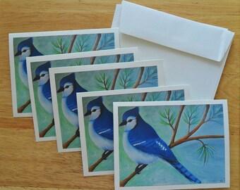 Blue Jay Note Card Set