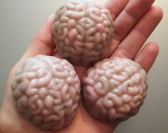 Six Realistic Anatomy Brain Soaps in Buttercreme and Snickerdoodle fragrance by Lavish Handcrafted