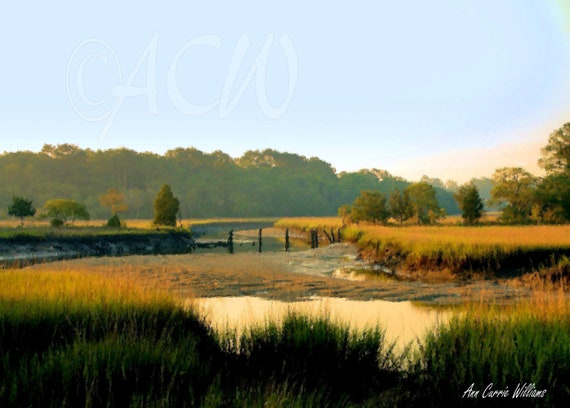 Tidal Creek, Edisto Island, South Carolina (canvas)