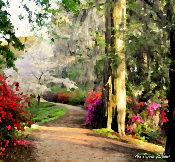 Garden path in full bloom in Edisto Memorial Gardens