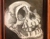 Sgraffito Skull