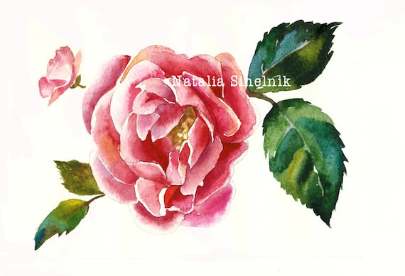 Pink dogrose branch digital download from original watercolor in pink and green colors, cottage chic style painting clip art