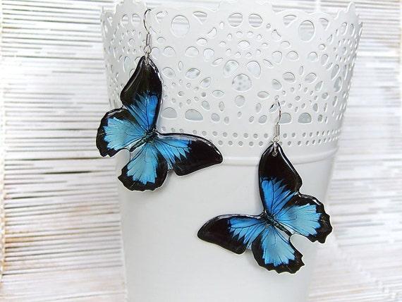 Resin Transparent Earrings  Blue / Black  Butterflies