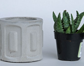 Cement Planter, Future Relic #1