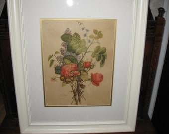 "FRAMED T L TREVOST Botanical Print 1940s or Older 19 1/2"" X 23"""
