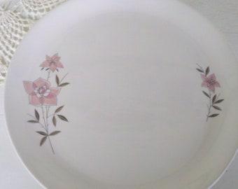 Vintage set dinner plates