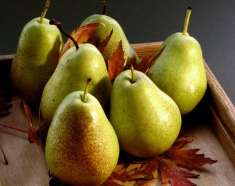 1/2 Ounce Pear Flavor Oil
