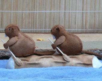 Beaver camp - Sailing the log - DIY kit