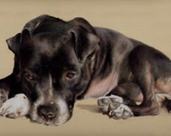Commission a beautiful custom pastel pet portrait from your own photos
