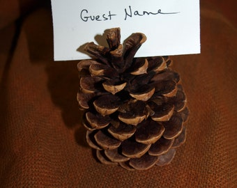 """All Natural Pine Cones 3""""-- 4"""" (variety of colors) - Create Guest Seating Place Card Holders Or Guest Favors For Rustic Country Weddings"""