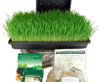 Organic Wheatgrass Growing Kit - Grow & Juice Wheat Grass For Pennies a Day - Trays, Wheat Seeds, Soil, More
