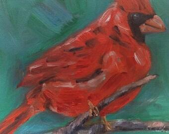 Cardinal bird Original Oil Painting  6x6 Painting, oil on board SALE